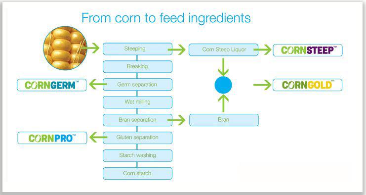 Corn to feed process graph